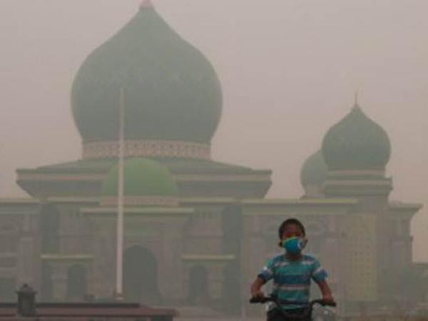 Banyak Anak-anak Jadi Korban Kabut Asap, Jokowi Tolak Evakuasi ke Luar Kota