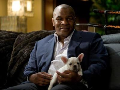 Mike Tyson Bantah Tampil di The Hangover 3