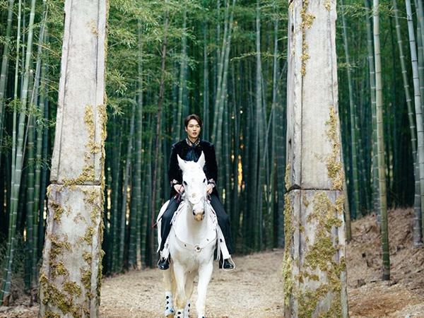 Nikmati Sejuknya Ahopsan Forest Busan, Lokasi Syuting Drama The King: Eternal Monarch
