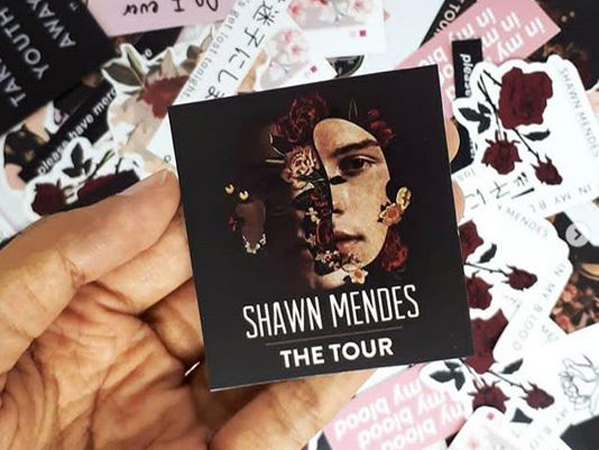 Shawn Mendes Siap Konser di Indonesia, Ini Bocoran Harga Tiketnya