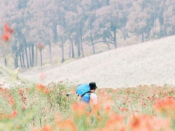 Bangga, Kota Apel Ini Raih Prestasi Sebagai Kota Dengan Udara Terbersih Di Asia