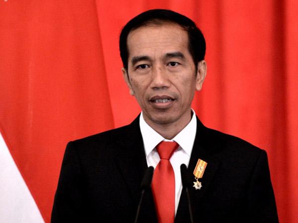 Dikritik Ikut Campur Penanganan Pungutan Liar, Ini Tanggapan 'Cool' Presiden Jokowi