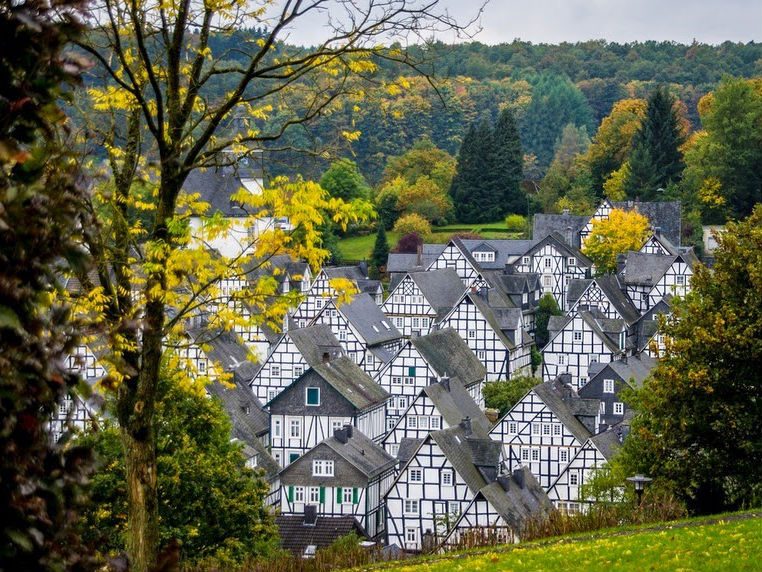 Cantiknya, Rumah-rumah Ini Disusun Rapi di Tengah Hutan!