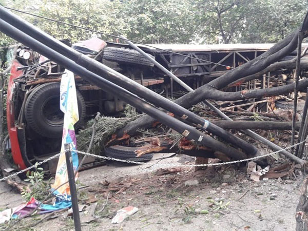 Penyebab Tabrakan Keras dan Tergulingnya Bus TransJakarta di Patal Senayan Tumbangkan Pohon hingga Tiang