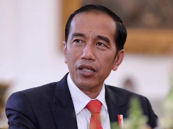 Potret Sapi Sumbangan Jokowi ke Masjid di Sulawesi Utara, Tegap Berotot!