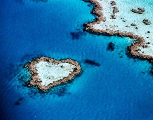 Heart Reef, Gugusan Karang Berbentuk Hati di Australia