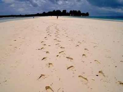 Kecepatan Berjalan Dapat Diketahui dari Jejak Kaki
