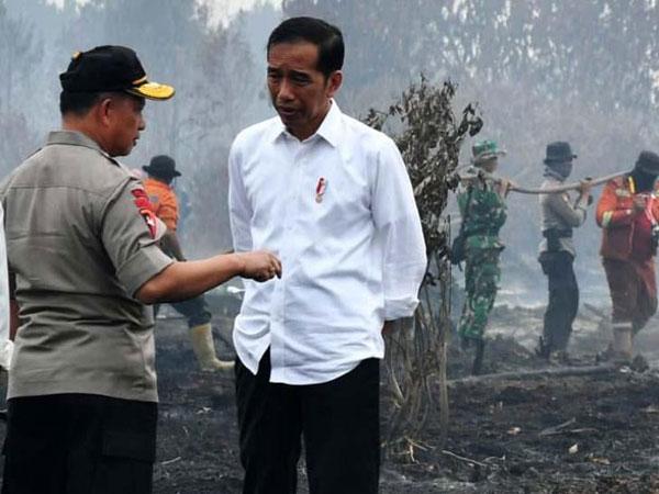 Foto-foto Jokowi di Lokasi Karhutla yang Sempat 'Tarik Urat' di Rapat Penanganan Kabut Asap Riau