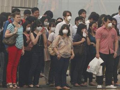 3 Perusahaan Malaysia Diduga Pembakar Hutan