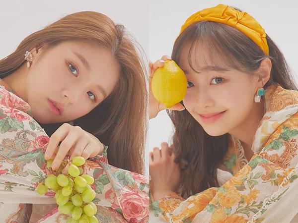 Heejin dan Chuu Bicara Soal Kuatnya Ikatan Member LOONA