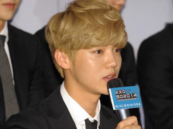 Luhan Mundur dari EXO, Bagaimana Kelanjutan Program Variety Show ' EXO 90:2014'?