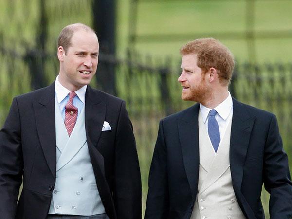 Alasan Mengharukan Penyebab Pangeran Harry Dapat Warisan Lebih Banyak dari Kakaknya