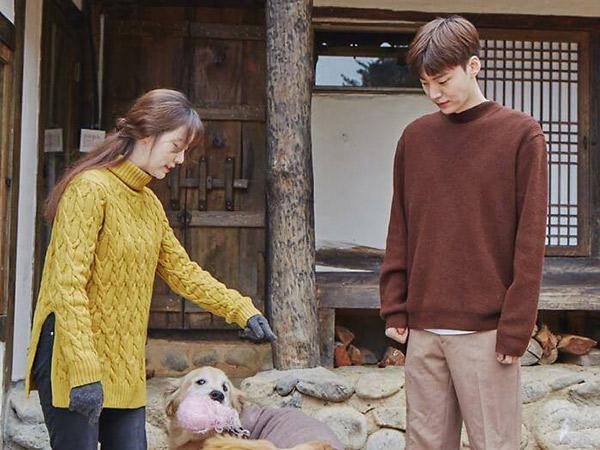 Dituding Telantarkan Hewan Peliharaan, Ini Bukti dari Percakapan Goo Hye Sun dan Ahn Jae Hyun