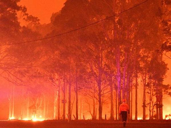 Kebakaran Masih Berkobar, Australia Denda Ratusan Juta Bagi Siapa Pun yang Buang Puntung Rokok Menyala