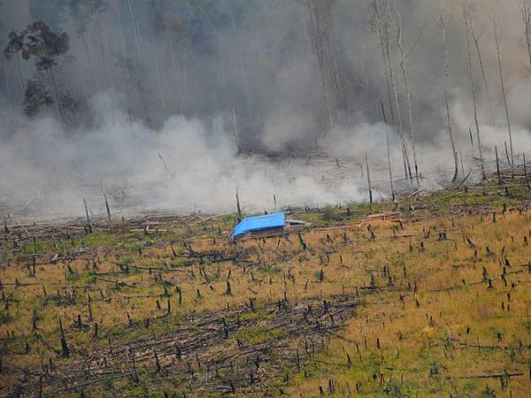 Kobaran Api Sudah Reda, Ini yang Menyebabkan Kabut Asap Sulit Ditangani