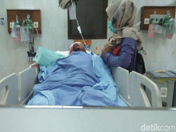Pasangan Suami-Istri di Riau Diduga Diserang Beruang, Sang Istri Tewas!