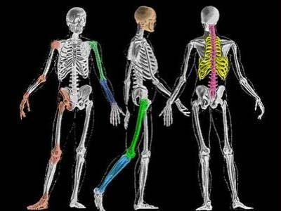 Tips Menjaga Kesehatan Tulang