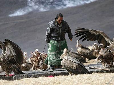 Jaman Modern, Tradisi Mayat di Santap Burung Masih Ada di Tibet