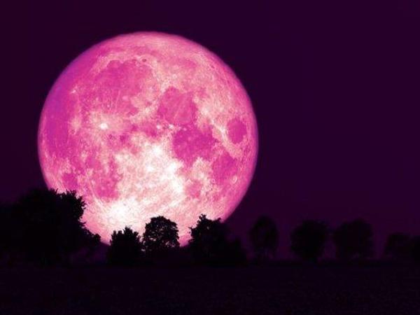Penjelasan Gerhana Bulan dan Strawberry Full Moon Malam Ini!