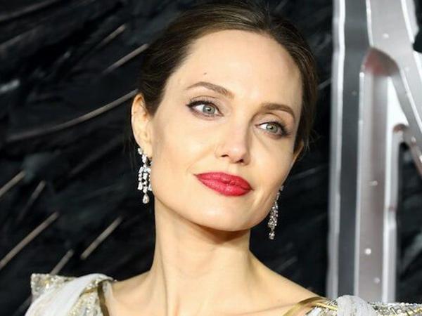 Angelina Jolie Sutradarai Film Biopik 'Unreasonable Behavior'