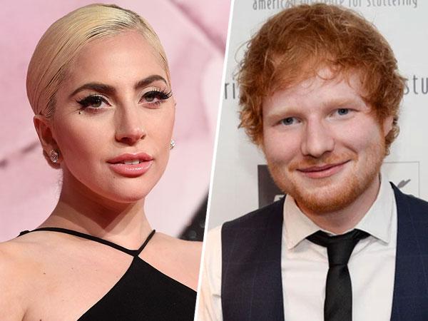 Tanggapan Lady Gaga Soal Penggemarnya yang Bully Ed Sheeran