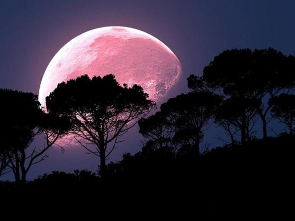 Bersiap Warnai Isolasi Di Rumah dengan Memandang Super Pink Moon di Langit Cerah Besok!
