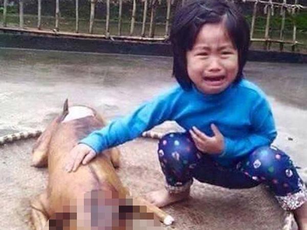 Miris, Bocah Ini Nangis Saat Temukan Anjing Kesayangannya Telah Dipanggang dan Siap Santap
