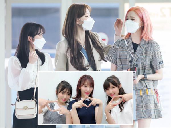 IZ*ONE Bubar, Miyawaki Sakura, Yabuki Nako, dan Honda Hitomi Pulang Kampung