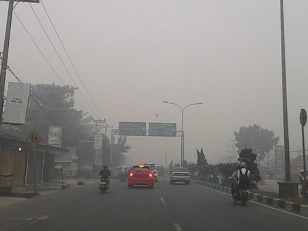 Kualitas Udara Semakin Memburuk, Kota Pekanbaru Sudah Tak Layak Dihuni