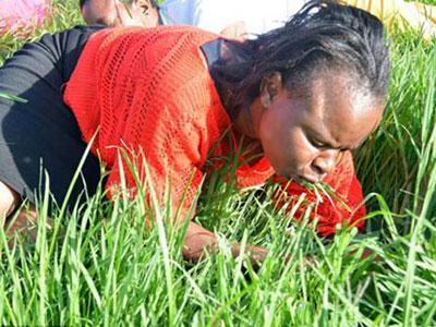 Demi Dekat dengan Tuhan Orang Afsel Rela Makan Rumput