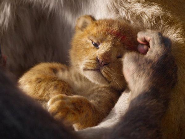 Pecahkan Rekor, Film Live-Action 'The Lion King' Justru Mengundang Perdebatan Netizen