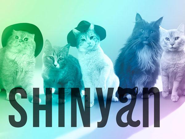 Kenalan dengan SHINyan, Grup 'Pengganti' SHINee di Jepang yang Menggemaskan!