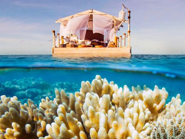 Menikmati Pemandangan Laut Sambil Berwisata Ala 'Finding Dory!