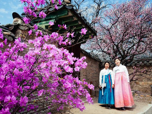 Jalan-jalan di Situs Warisan Dunia yang Cantik Berbeda di Tiap Musimnya, Istana Changdeokgung