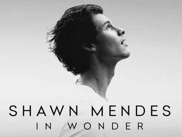 Review Film Dokumenter 'Shawn Mendes: In Wonder': Seperti Ada yang Kurang