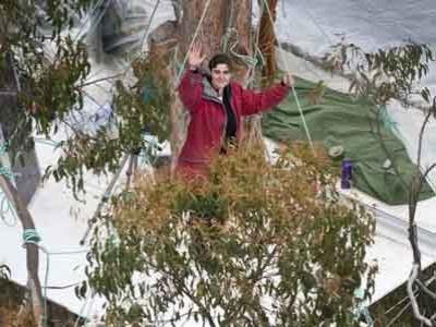 Aktivis Turun Setelah 15 Bulan Tinggal di Pohon