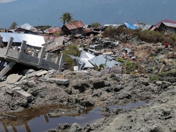 Penjelasan Peneliti yang Tak Menyangka Gempa di Palu-Donggala Bisa Sebabkan Tsunami