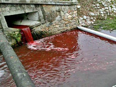 Warga Slovakia Kaget Air Sungai Berubah Merah Darah