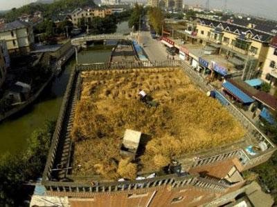 Wah, Di China Petani Menggarap Sawah Diatas Gedung