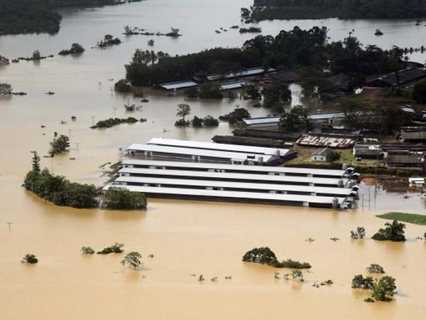 Dahsyatnya Banjir Bandang Sri Lanka yang Tewaskan Nyaris 200 Orang