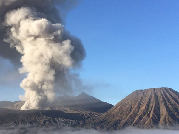 Semburan Abu Vulkanik Gunung Bromo Meningkat Jadi 1.500 Meter, Segala Persiapan Dilakukan