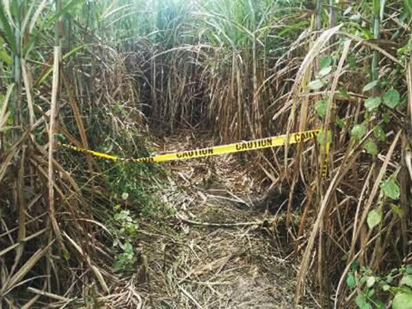 Tiga Warga Korea Ditembak Mati di Tengah Kampanye Pembunuhan Pengedar Narkoba Filipina
