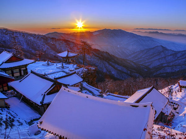 Lebih Mudah 'Lahap' PyeongChang dalam Sehari Lewat Jalur Gyeonggang!