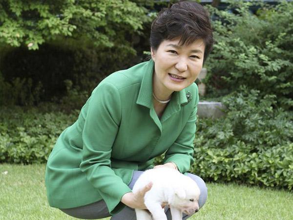 Usai Kasus Korupsi, Park Geun Hye Diadukan ke Polisi Atas Penelantaran Hewan