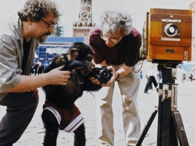 Jadi Fotografer, Simpanse ini Raih Ratusan Juta Rupiah