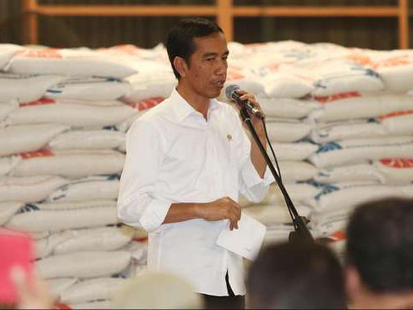 Jokowi Memastikan Harga Beras Akan Turun Minggu Depan