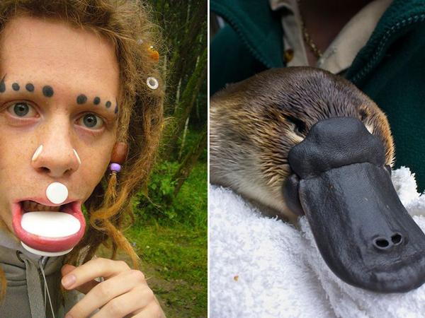 Wah, Pria Ini Ubah Wajahnya Hingga Mirip Seekor Platypus!