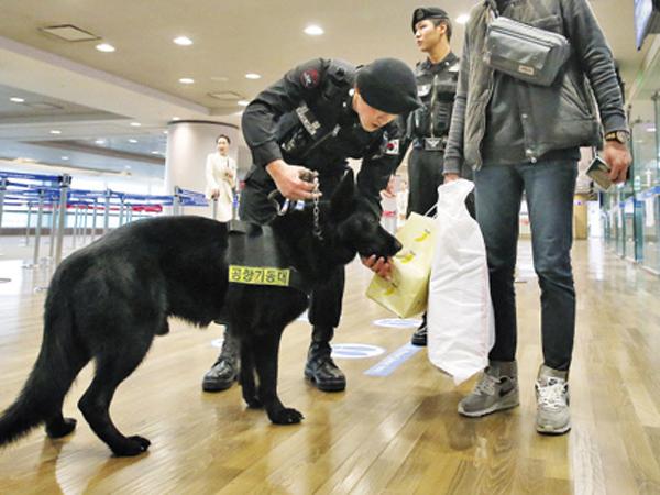 Beberapa Hal Ini Membuat Korea Selatan Harus Waspada Terhadap Serangan Teroris