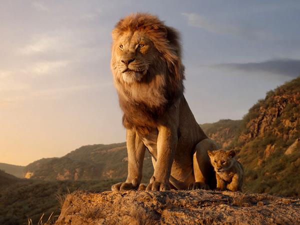 The Lion King 2 Dibuat, Disutradarai Barry Jenkins