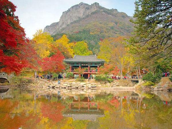 Jeolla Selatan, Surganya Korea Selatan Yang Belum Banyak Diketahui